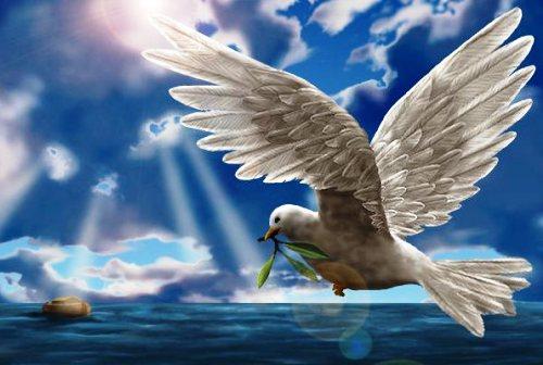 biblescreenshot.jpg